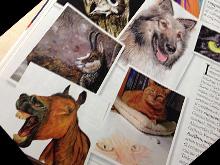 AnimalArt sulla rivista Quattro Zampe di maggio